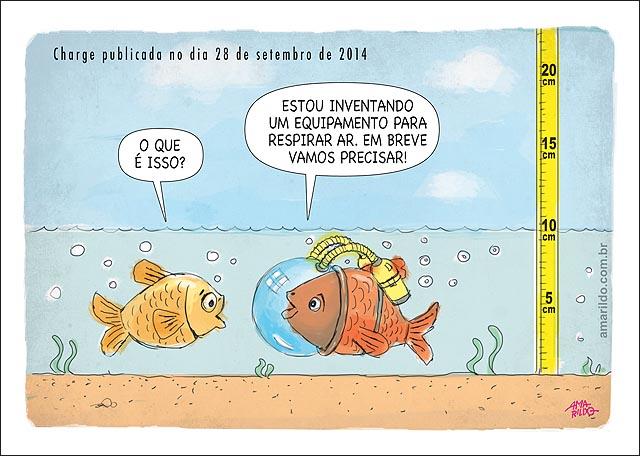 Peixe seca rios inventa aparelho para respirar oxigenio ser 2014